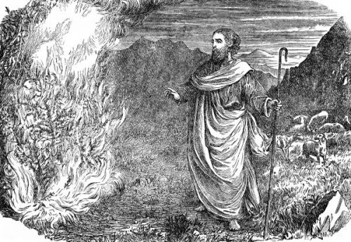 moses_burning_bush__image_7_sjpg660
